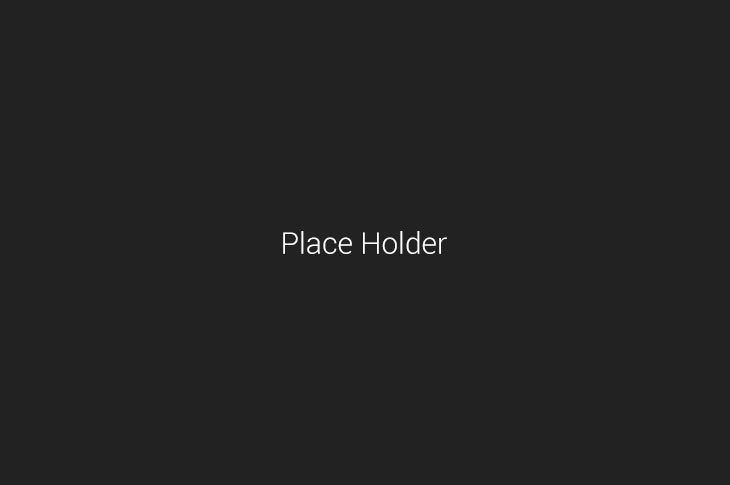 about-place-holder